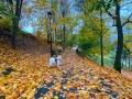 Alise Blāķe - Rudens krāsainā pastaiga