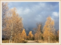 Inese Bebre - Būs rudens negaiss