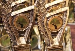 Kocenu-novada-sporta-laureats-Elinas-Upites-foto-2