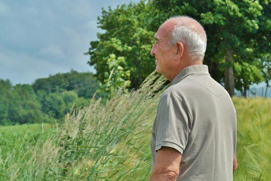 1-seniors vīrietis vasara pixabay
