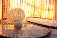 badmintons pixabay